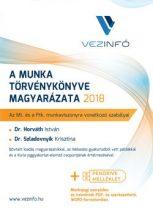 A Munka Törvénykönyve magyarázata 2018 (Könyv + Pendrive)